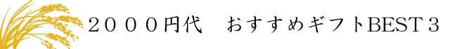 おせんべい・あられ2000円代ギフトベスト3