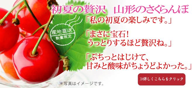 日本一さくらんぼ産地山形から美味しいさくらんぼお届け