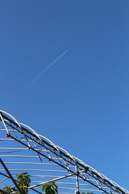 飛行機雲が綺麗な青空